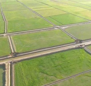 زهکشی زمین های کشاورزی